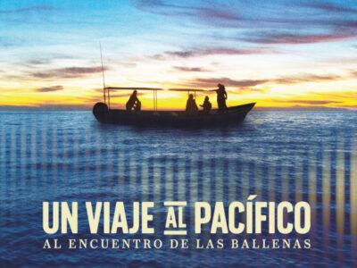 Un Viaje al Pacífico
